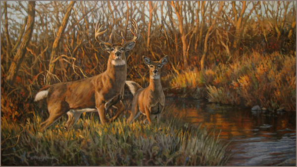 hagerman big and beautiful singles Drive about 20 miles northwest of sherman and you can experience the hagerman national wildlife refuge america's most beautiful best 2018 singles.