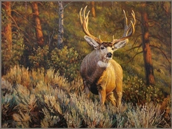 Edge of the Forest-Muledeer / Canvas Print 30