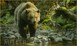 Soda Butte Grizzly /Canvas Print
